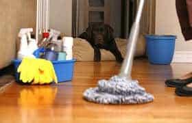 Impresa di pulizia Seregno